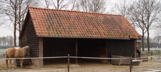 Paarden hebben een inloopstal en kunnen zelf kiezen of ze buiten of binnen willen staan.